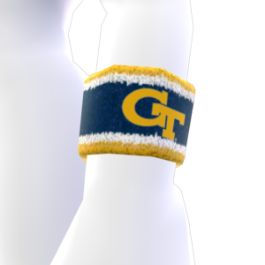 Georgia Tech Item de Avatar