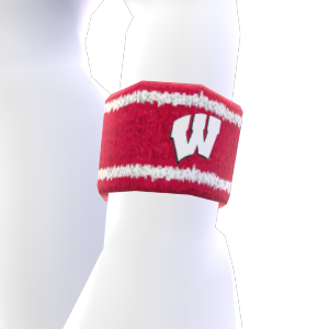 Wisconsin Wristband