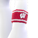 Wisconsin Avatar-Element