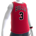 Bulls Wade Jersey