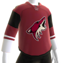 Coyotes 2016 Home Jersey
