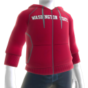 Washington State Hoodie