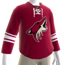 Arizona Coyotes Home Jersey