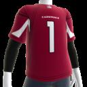 Cardinals Fan Jersey