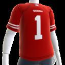 49ers Fan Jersey