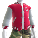 Ohio State Varsity Jacket