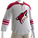 Arizona Coyotes Away Jersey
