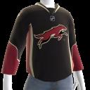 Phoenix Coyotes Alternate Jersey