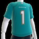 Dolphins Fan Jersey