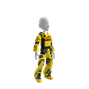 BUMBLEBEE suit