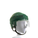 Minnesota Wild Alternate Helmet