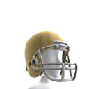 Notre Dame Football Helmet