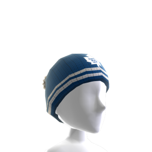 Toronto Maple Leafs Toque