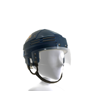 Florida Panthers Helmet