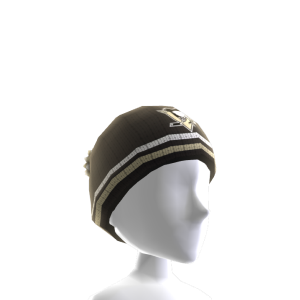Pittsburgh Penguins Toque