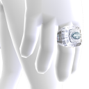 New York Jets Championship Ring