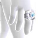 Detroit Championship Ring