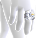 Jacksonville Championship Ring