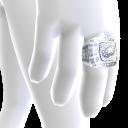 Philadelphia Championship Ring