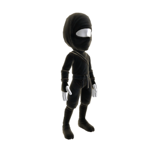 Ninja Outfit