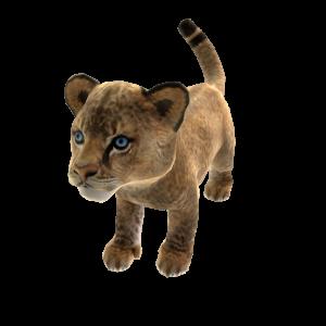 African Lion (Plush)