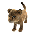 African Lion (Plush) 