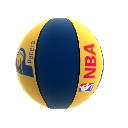 Balon de basketball Indiana