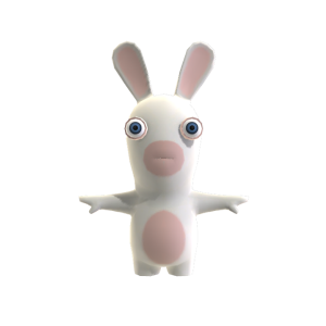 Rabbid Training