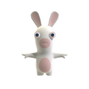 Rabbid-Training