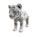 White Tiger