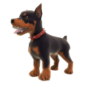 Chiot doberman 