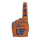 Florida Foam Finger