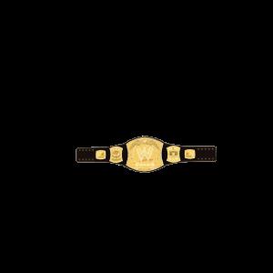 Cinturón de WWE Championship