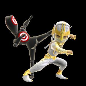 Ninja Combat Training