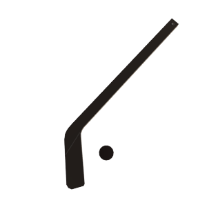 Hockey Stick Prop