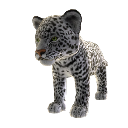 Jaguar blanc (peluche) 