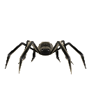 Alan Wake's spider toy Prop