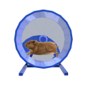 Hamster Wheel