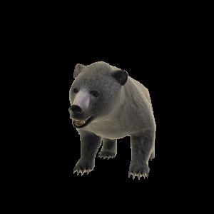 De beer