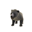 Urso (mascote) 