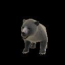 Oso (mascota)