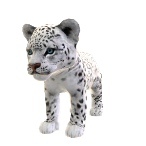 Leopardo das Neves