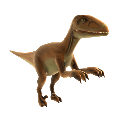 Vlociraptor