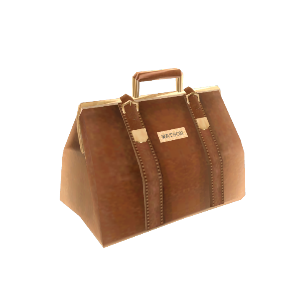 Dr. Watson Bag
