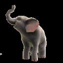 Elephant Pet