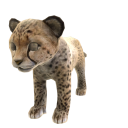 Cheetah (Plush) 