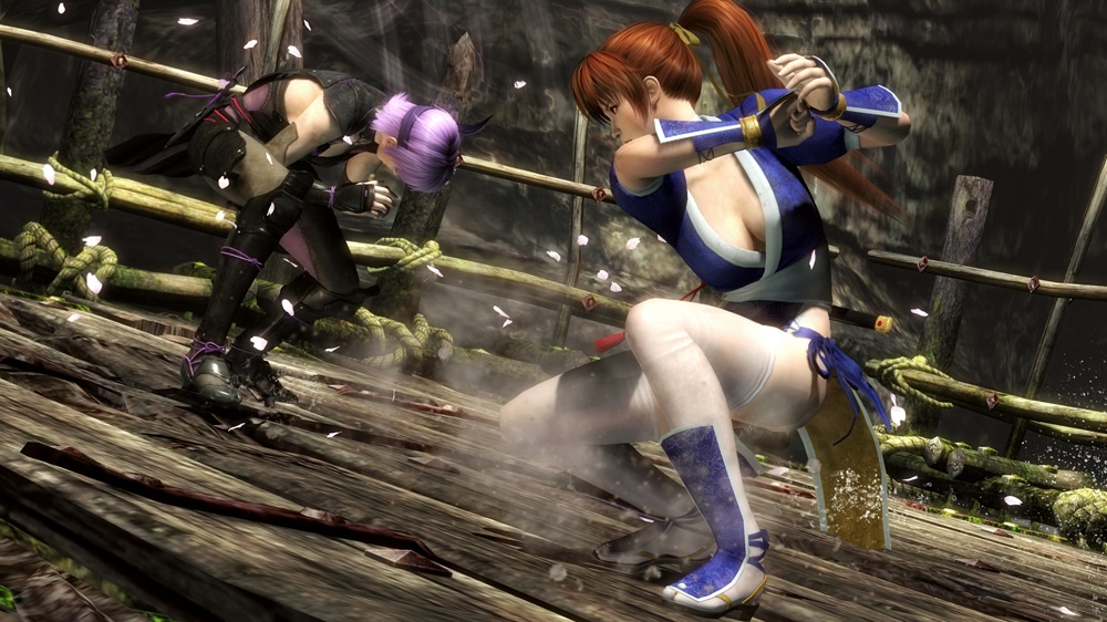 Image from DEAD OR ALIVE 5 Online Pass