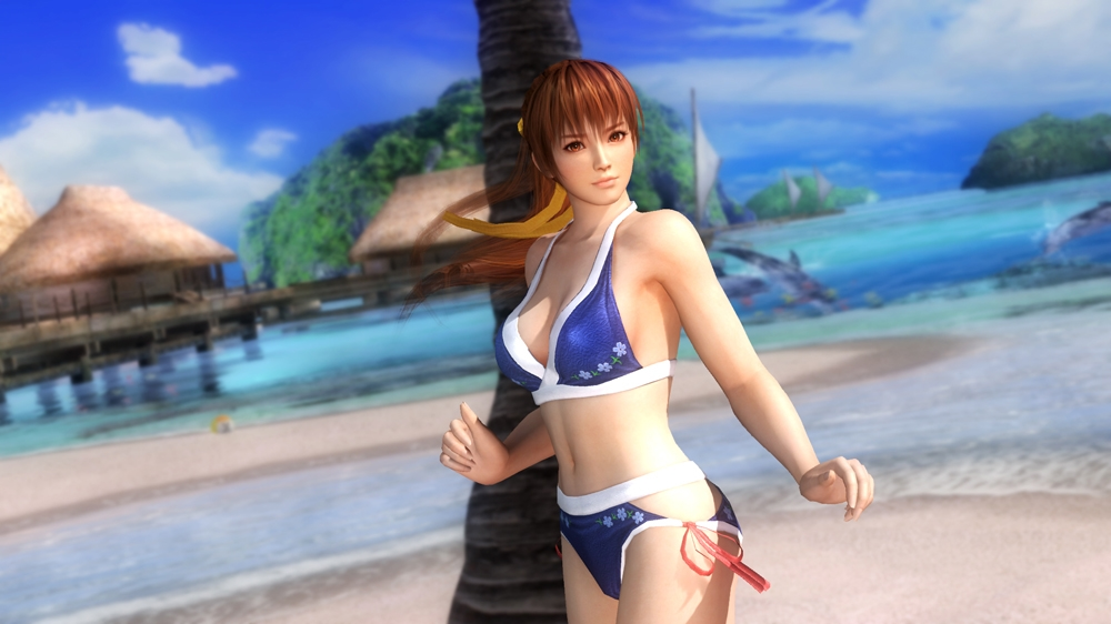 Image from Dead or Alive 5 Hotties Swimwear Pack 1