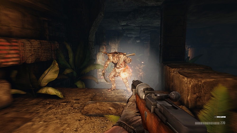 Image from Deadfall Adventures Collectors Edition DLC