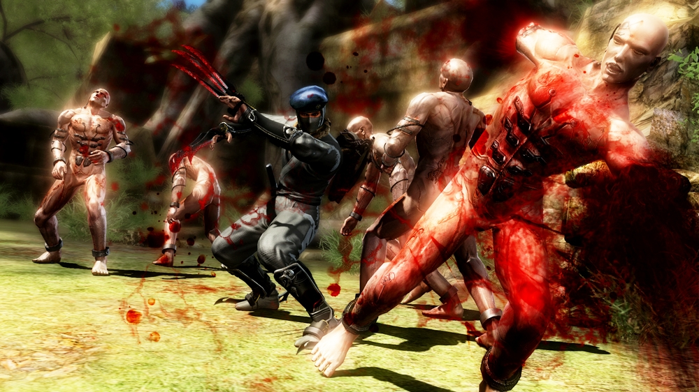 Image from Ninja Gaiden® 3 Ninja Pack 1